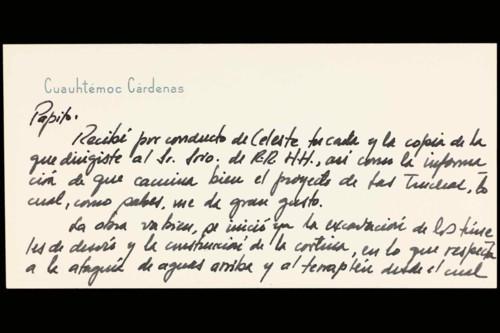 Vida personal del ingeniero Cuauhtémoc Cárdenas Solórzano: 1965