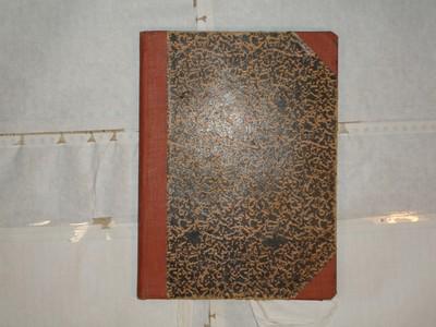 Libro de Bautizos num. 100