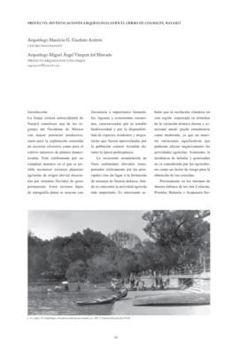 Proyecto: Investigaciones arqueológicas en el cerro de Coamiles, Nayarit