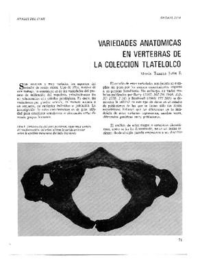 Variedades anatómicas en vértebras de la colección de Tlatelolco.