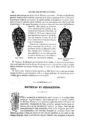 Doctrinas en geroglíficos.