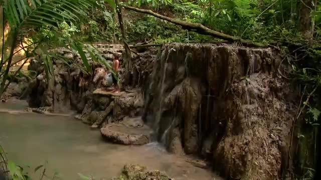 El Patrimonio Biocultural de los Pueblos Indígenas