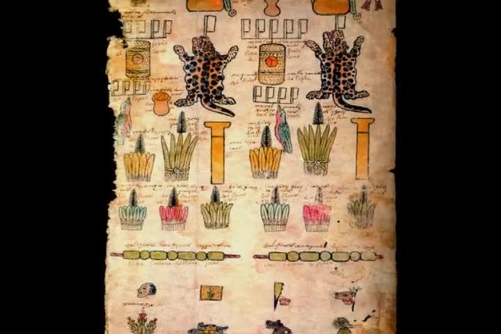 ¿Cómo se conservan los códices hoy?