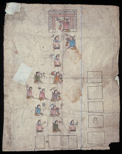 Genealogía de Zolin