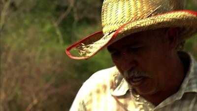Caminos Arrieros. Historias de la Negritud