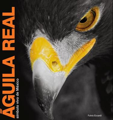 Águila Real. Símbolo vivo de México