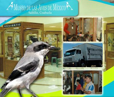 Aves de México