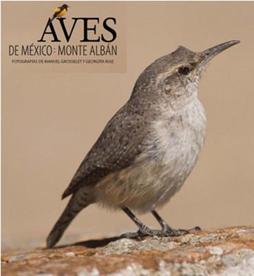 Aves de México: Monte Albán. Fotografías de Manuel Grosselet