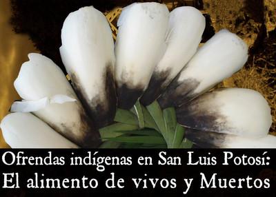 Ofrendas indígenas en San Luis Potosí. El alimento de vivos y muertos.