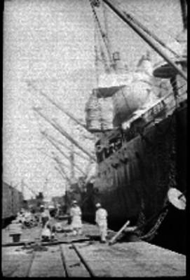 Hombres realizando trabajos en el Puerto de Veracruz
