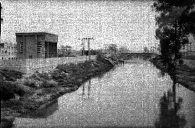 Canal del desagüe cloacal