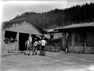 Campesinos junto a un caballo en el patio de una hacienda