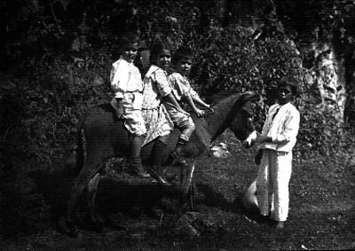 Niños montados en un burro