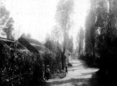Hombres frente a unas casas rusticas de Xochimilco