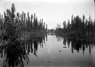 Canal de Xochimilco