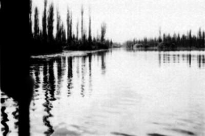 Laguna de Cuemanco