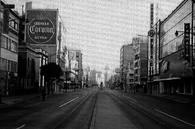Avenida Insurgentes