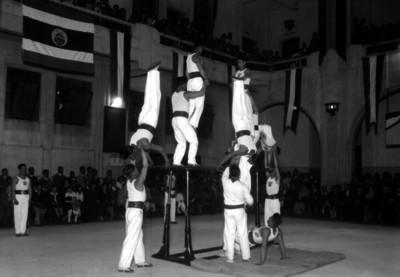 Gimnastas realizan Pirámide sobre las barras paralelas
