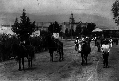 Hombres arrean ganado por la plaza de un poblado