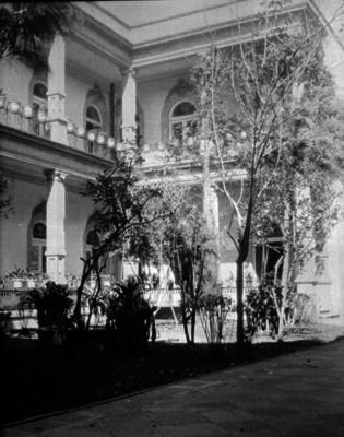 Jardín y patio de una casa, vista parcial