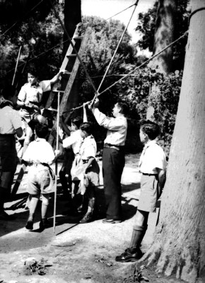 Exploradores instalan cuerdas en los árboles