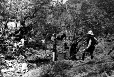 Niños exploradores realizan pruebas de destreza en Amatlán
