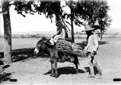 Campesino y niños con burro y carga de leña