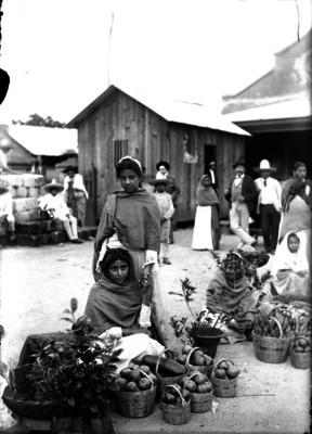 Mujeres venden plantas y frutos durante un tianguis, retrato