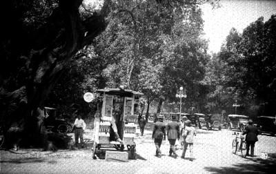 "Vida Cotidiana en una calle de ""CHAPULTEPEC"""