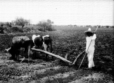 Plowingnear Cuautla