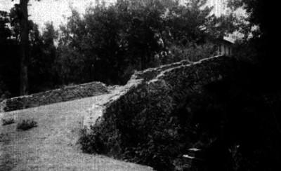 Puente rústico en San Ángel