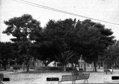 """Plaza pública en """"Tampico"""""""