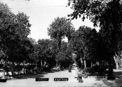 Alameda [en] Zacatecas