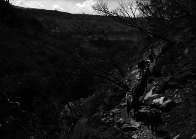 Viajeros montados en caballos caminan por la sierra de Colima