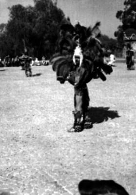 Danzantes en el Anahuacali