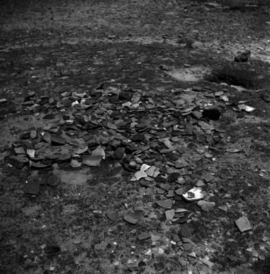 Restos de alfarería prehispánica y osamentas en la superficie de una zona arqueológica