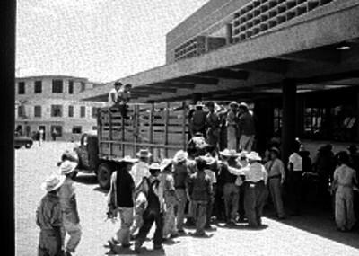 Braceros abordando un camión de redilas