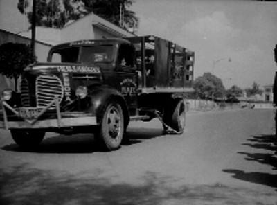 """Camión de carga con """"frenos de emergencia"""""""