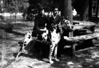 Pareja con un perro gran danés