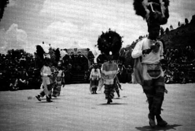 Danzante de la pluma ejecuta un baile en el festival de la Guelaguetza