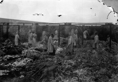 Bomberos revisan restos de un lugar incendiado