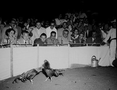 Banqueros presidiendo una pelea de gallos en un palenque de la Ciudad de Guadalajara