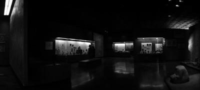 Sala del museo de antropología, vista parcial