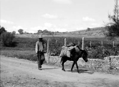 Campesino arrea asno por un camino rural