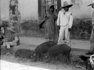 Pareja de campesinos con cerdos en una calle