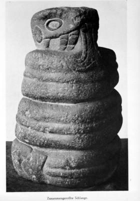 Serpiente enroscada, reprografía bibliográfica