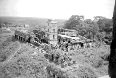 Vista general del Palacio desde el Templo de las Inscripciones
