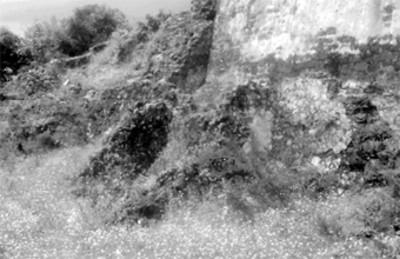 Detalle del templo de Tepozteco