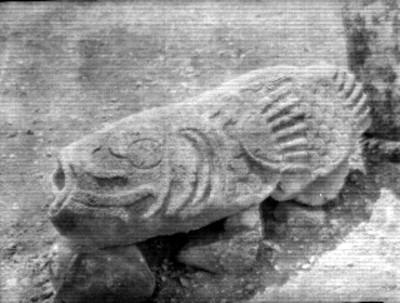 Fragmento de escultura con elementos zoomorfos