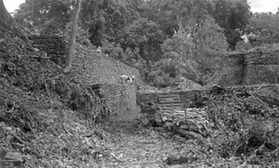 Hombres realizan labores de reconstrucción en Paxilila